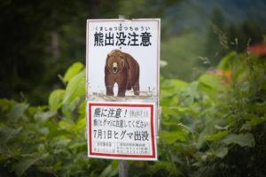 石川県 熊 生息 いつ 時間帯 出没